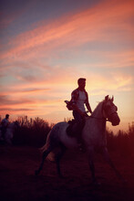 Man Riding  Horses In The Sun...