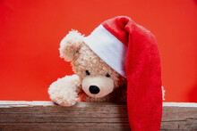 Teddy Bear With Santa Hat, Red...