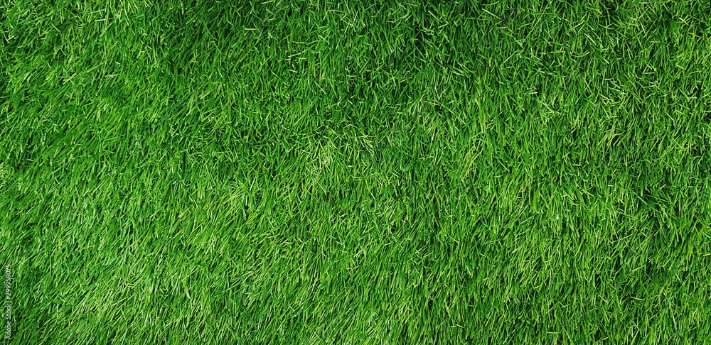 Fototapety, obrazy:  Green grass field for background - Land, Surface and Playing sport game concept