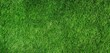 Green grass field for background - Land, Surface and Playing sport game concept