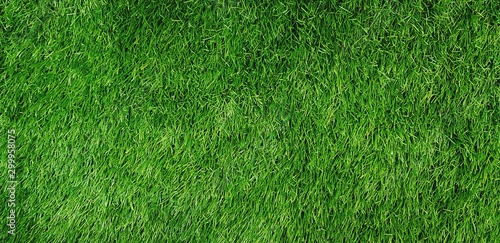 Green grass field for background - Land, Surface and Playing sport game concept Fototapet
