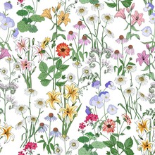 Floral Seamless Pattern. Wildf...