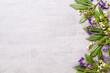 Leinwandbild Motiv Bio herbal green cosmetic arrangement, sea salt and handmade cosmetic.