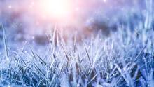 Winter Frosty Morning. Winter ...