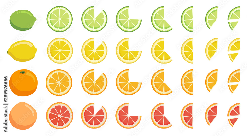 Fototapeta Vitamin C. Set of vector elements. Bright fresh ripe juicy whole and cut citrus fruit and slices isolated on white background. Lime lemon orange grapefruit. Clip art for your design