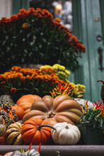 Autumn Pumpkin And Gourd Decor...