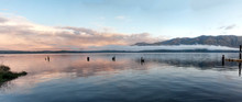 Lake Quinault Panorama