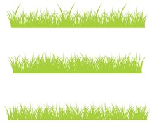 Backgrounds Of Green Grass, Isolated On White Background, Vector Illustration