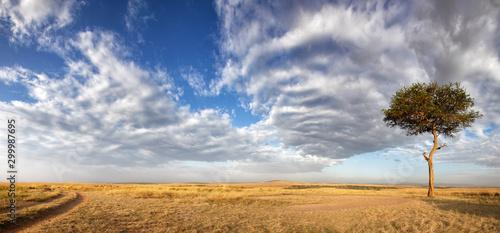 Foto auf AluDibond Rosa dunkel Panorama of the grasslands of the Masai Mara
