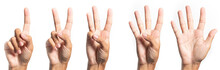 Five Fingers Count Signs Isol...