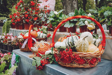 Autumn Fall Seasonal Decorations With Pumpkins, Fresh Fruits In Basket, Berries And Flowers. Autumn Harvest, Farm Market, Sale