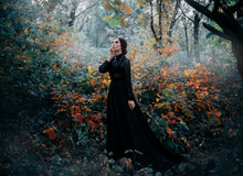 Beauty Gothic Princess Walks In Autumn Forest. Fantasy Mystical Dark Backdrop. Autumn Foggy Nature, Yellow Trees, Cold Light. Glamorous Long Black Fashion Dress. Elegant Bundled Hairstyle. Goth Queen