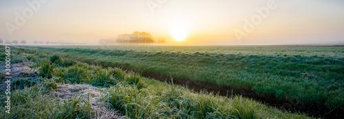 Foto auf Leinwand Khaki Leichter Morgennebel mit Sonnenaufgang über ein Naturschutzgebiet