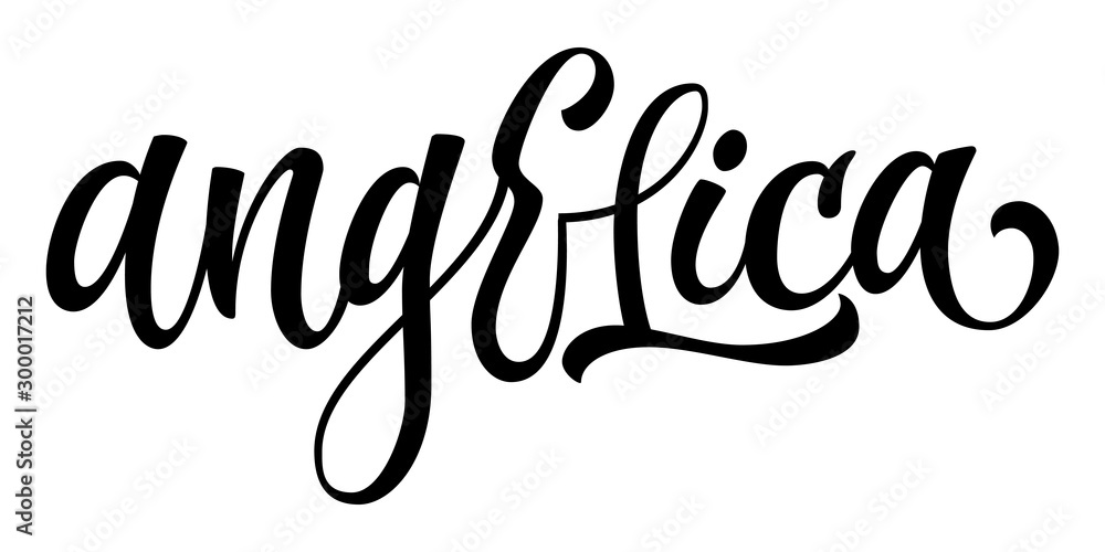 Fototapeta Hand drawn spice label - Angelica. Vector lettering design element. Isolated calligraphy scrypt stile word.
