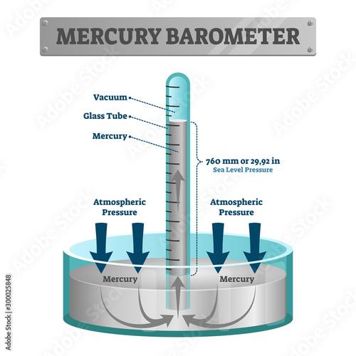 Mercury barometer vector illustration Wallpaper Mural