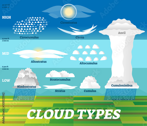 Cloud types vector illustration Wallpaper Mural