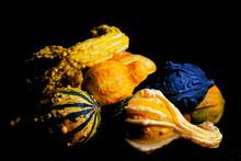 Ornamental Gourds On A Black Background