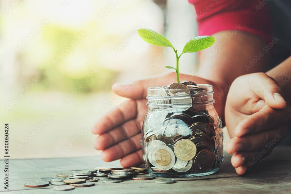 Fototapeta hand protection money with tree on jug glass. concept saving