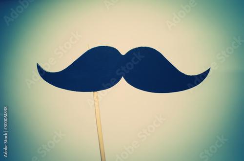 Fototapeta moustache mask obraz na płótnie