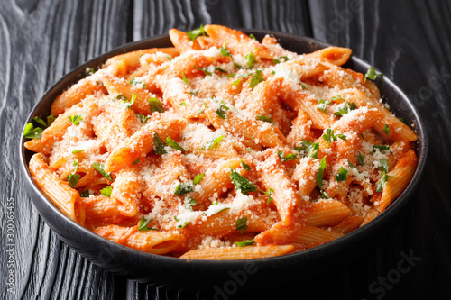 Penne alla Vodka is a classic Italian pasta dish made with penne in a creamy tomato and vodka sauce close-up in a plate Fototapet