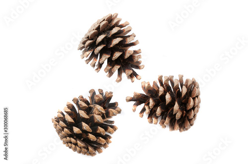 Fotografie, Obraz  Christmas pine cones on white background