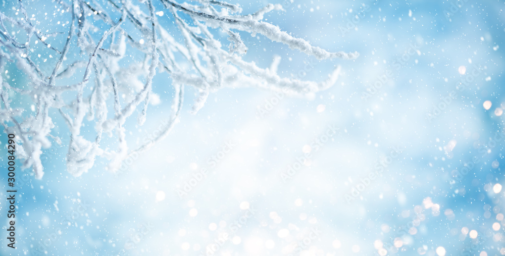 Fototapety, obrazy: Winter background with snowy and iced branches of trees on blue sky backdrop. Christmas or New Year winter concept.