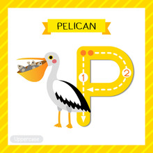 Letter P Uppercase Tracing. Pe...