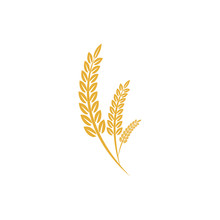 Agriculture Wheat Vector Illustration Design Template. Elements Of Wheat Grain, Wheat Ears, Seed Or Rye, Prosperity Symbol