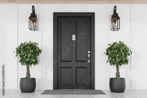 La pose en embrasure Nature Black front door of white house with trees