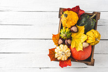 Colourful Pumpkins And Maple Leaves In Box On White Wooden Background With Copyspace. Autumn Concept
