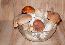 Edible Porcini Mushrooms In A Glass Bowl