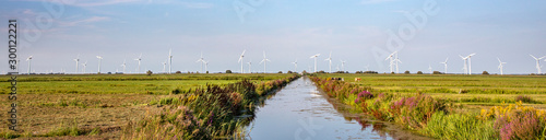 A ditch across the fields and faraway wind turbines under a light blue sky in the polder of Bunschoten Fototapeta