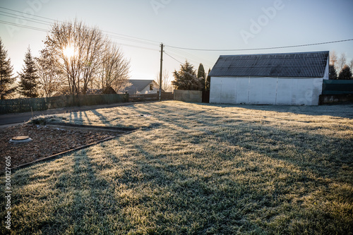 Obraz A plot of land with a lawn for the construction of a house or territory for grazing farm animals in frosty sunny morning. May be cut to banner or wallpaper with copy space. - fototapety do salonu