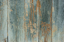 Damage Wood Wall By Termite