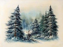 Evergreen Pine Trees Snow Covered In Forest, Winter Scene Oil Painting. Christmas Concept.