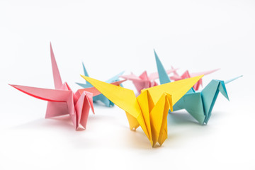 Origami birds flock on white background. Leadership concept