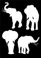 Graphical Set Of Elephant Silhouettes Isolated On Black Background,vector Illustration