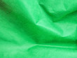 canvas print picture - Abstract background of wrinkle pattern, vivid or vibrant green paper texture.