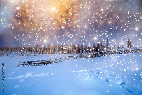 Keuken foto achterwand Lavendel Majestic winter landscape with snowy fir trees. Winter postcard.