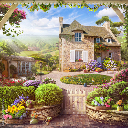French estate with vineyards Fototapeta