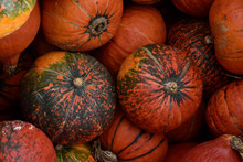 A Large Orange Pumpkin With A ...