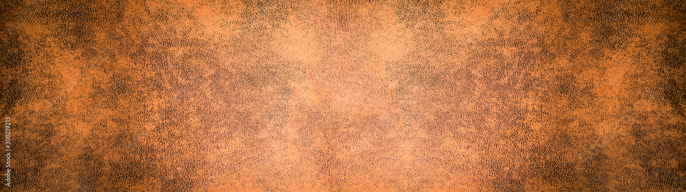 Fototapety, obrazy: old brown rustic leather - background banner panorama long
