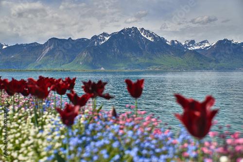 Los alpes desde Montreux Canvas Print