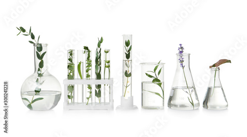 Photo Test tubes and other laboratory glassware with different plants on white backgro