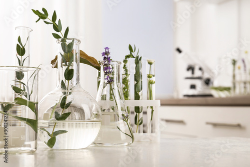 Cuadros en Lienzo Laboratory glassware with different plants on table indoors