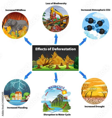 Spoed Foto op Canvas Kids Chart showing effects of deforestation