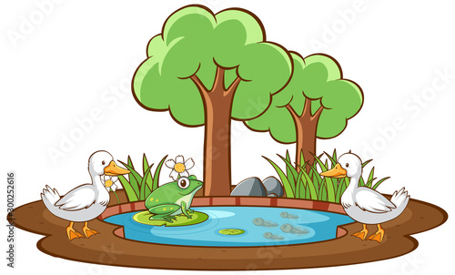 Spoed Foto op Canvas Kids Isolated picture of duck and frog in the pond