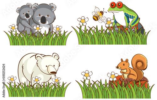 Spoed Foto op Canvas Kids Four different types of animals in garden