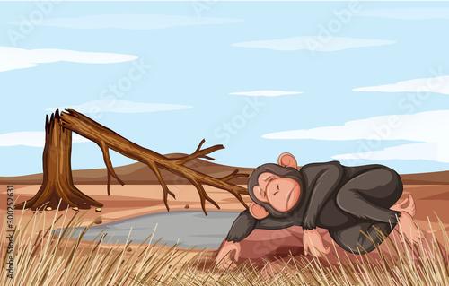 Spoed Foto op Canvas Kids Deforestation scene with dying monkey