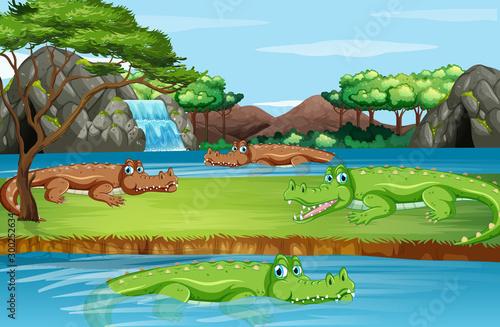Spoed Foto op Canvas Kids Scene with many crocodiles